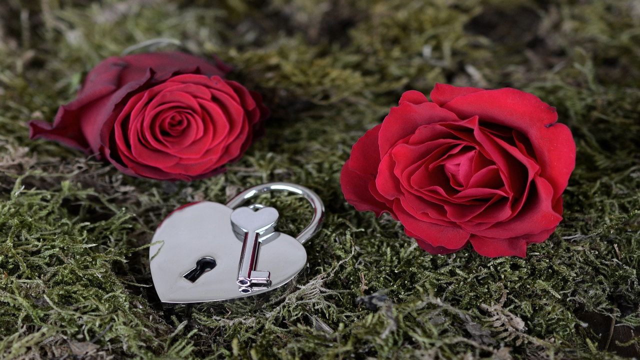 rose day wishes for girlfriend in english