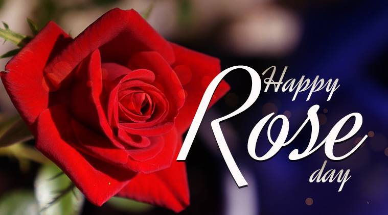 rose day special image
