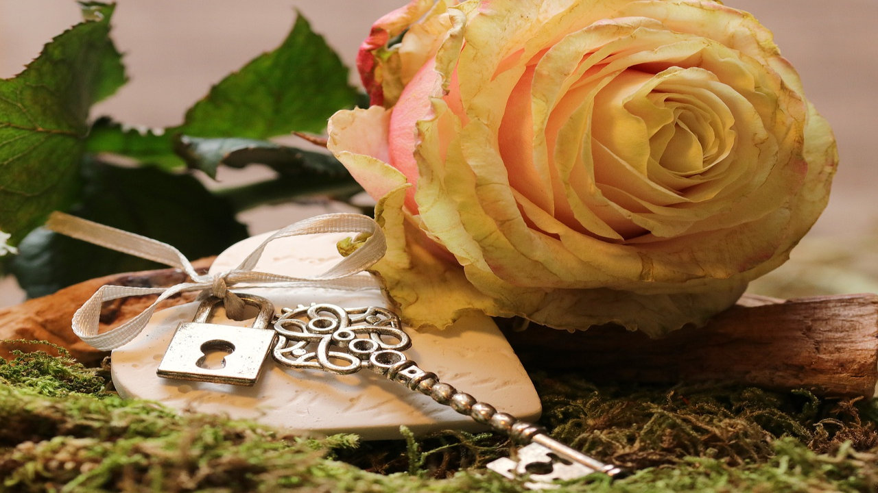 rose day wishes for boyfriend
