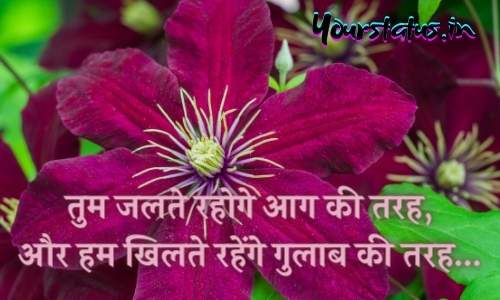 Whatsapp Hindi Quotes